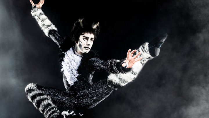 An actor in full cat costume including a white face and black and white fur leaps in to the air with left hand extended behind them, left leg tucked under their pelvis, and right leg and arm outstretched